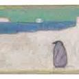 海とペンギン